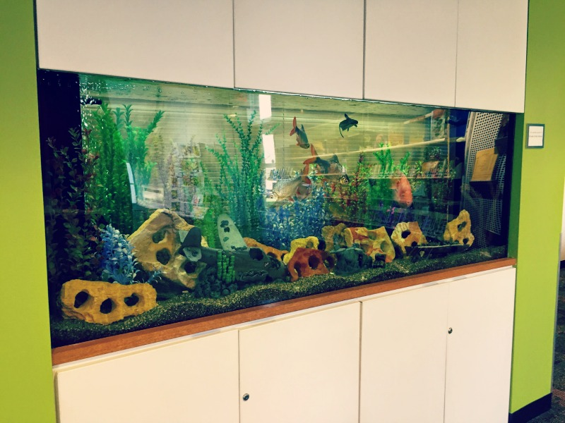 Wauconda Area Library Fish Tank