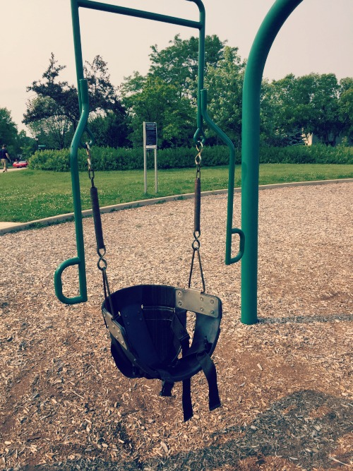 Fountain Square Park Elk Grove Village Playground Special Swing